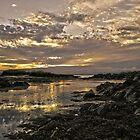 Skerries Sunset by Martina Fagan