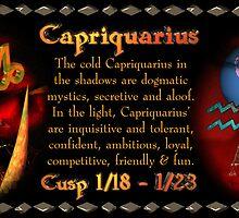 Valxart Capriquarius is Capricorn/Aquarius Cusp  by Valxart