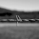 Barbed wire  by Amaelanders