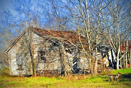 Old House by venny