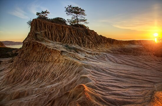 Torrey Pines by jswolfphoto
