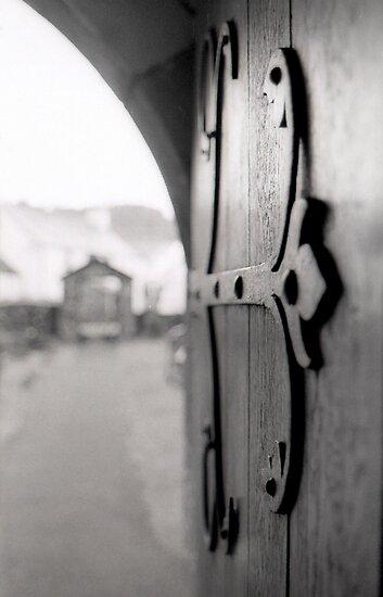 Door to the Big Wide World by Lucy Adams