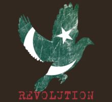 Revolution Is In The Air (Pakistan / Tahir ul Qadri) - Text by Mother Shipton