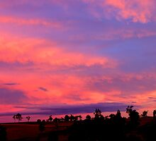 pink sky night by mrobertson7