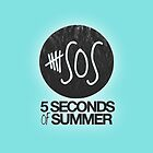 5 Seconds of Summer Case by arijenice