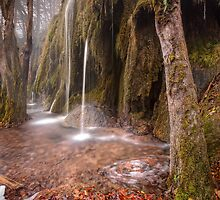 Plitvice waterfalls by Ivan  Prebeg