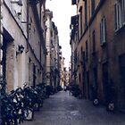 Rome by Valerie Howell