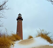 Little Point Sable Lighthouse by Debbie  Maglothin