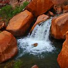 Grand Canyon side stream by LichenRockArts
