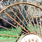 Rusted hay rake by Cameron Hicks