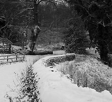 A Winter Yorkshire Wonderland by James Kowacz
