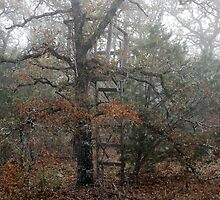 The Old Tree Stand by Paul Sturdivant