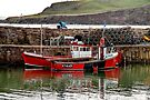 Moored for the Evening at Crail Harbour by Christine Smith