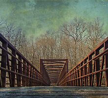 The Bridge To The Other Side of Where? by MotherNature