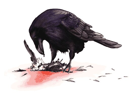 Crow, Bloody Snow 2 by Jessica Bone