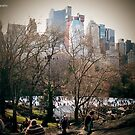 Central Park NYC by EvoBaBee
