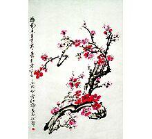 Chinese painting plum Photographic Print