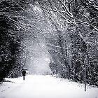 SNOWSHAKE by eyeone