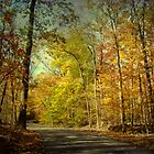 Autumn Foliage - Price Road - Green Lane PA by MotherNature2