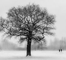 Walking in a winter wonderland by Ian Hufton