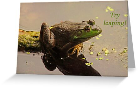 Try Leaping by Thomas Murphy