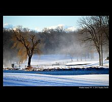 Winter Breeze Over The Spring Lake In The Morning - Middle Island, New York by © Sophie W. Smith