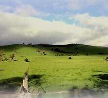Green Acres by Chris Chalk