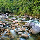 Mossman Gorge by Cameron B