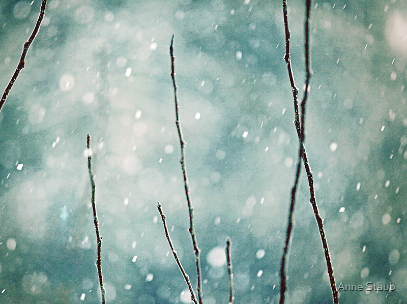 The sound of winter by Anne Staub