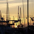 Sunset Through the Masts by seeingred13