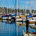Sausalito, California, USA Marina by Thomas Barker