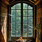 Old window in Bokrijk by Patrick Reinquin