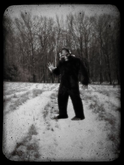 Sasquatch Photographic Evidence by Edward Fielding