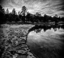 Cold Shore 2 by Bob Larson