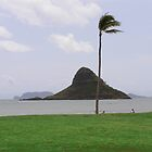 Chinaman's Hat by Fred  Senecal