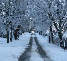 Snowy road.Snow in by bodragonfly