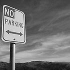 Too Many Rules (B&W) by AmishElectricCo
