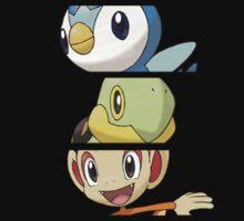 Pokemon Starters - 4th Gen by Falconpaunch