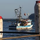 Patonga Beach fishing boat by Alfredo Estrella