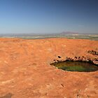 Uluru Ayers Rock Waterhole by Aaron Paul Stanley