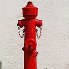 Bright Red Fire Hydrant by vivendulies