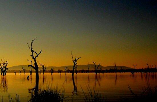 Morning Sunrise by Chris Chalk
