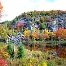 Fall scene Northern Ontario by creativegenious