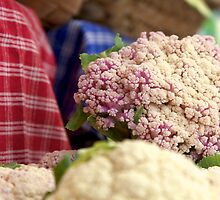 pink cauliflowers by thvisions