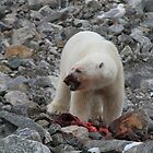 Polar Bear Dinner 1 by Aaron Paul Stanley