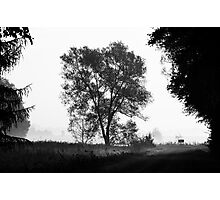 Countryside road Photographic Print