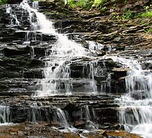 Ricketts Glen Stepped Waterfall by Gene Walls