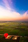 Blessings Of The Nile - Aerial View of the Egyptian Landscape by Mark Tisdale