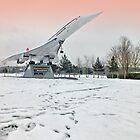 Heathrow Concorde - Brooklands Museum by Colin  Williams Photography
