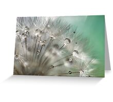 Silver Mint Dandelion Greeting Card